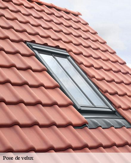 Pose de velux  dosches-10220 Artisan Lobry William